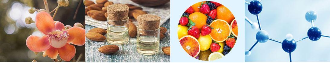 APIEU_365_Melting_Hand_Balm_ingredients